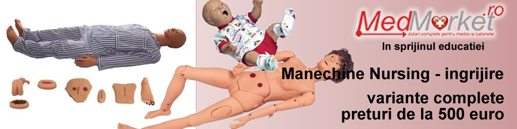 Manechine Nursing