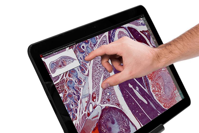 Statie microscopie digitala M8