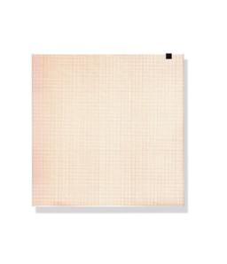 Hartie termica ECG pachet 150 file -210mmx 295mm